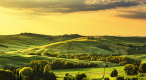 Tuscany spring, rolling hills on sunset. Rural landscape. Green Stock Photos