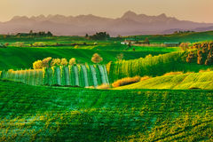 Tuscany, spring rural landscape. Countryside farmland and mounta Stock Photos
