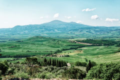 Tuscany at springtime, toned Royalty Free Stock Image