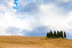 Tuscany before the storm Stock Photography