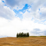 Tuscany before the storm Royalty Free Stock Photo