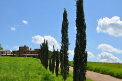 Tuscany summer  Italy Stock Image