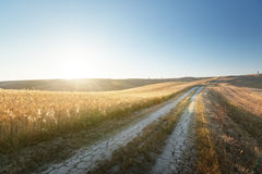 Tuscany sunny road, Italy Stock Photos