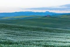 Tuscany at sunrise Stock Photos
