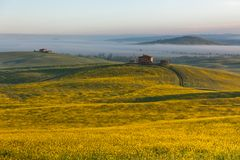 Tuscany at sunrise Stock Photos