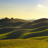 Tuscany, sunset rural landscape. Rolling hills, countryside farm, trees. Stock Image