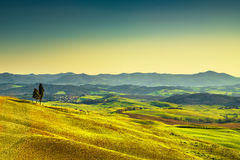 Tuscany sunset. Trees, rolling hills and meadows. Italy. Royalty Free Stock Image