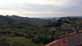 Tuscany swallow stock video footage