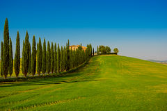 Tuscany typical landscape Royalty Free Stock Photos