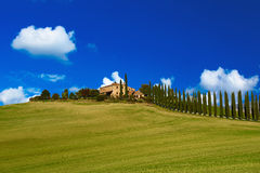 Tuscany typical landscape Stock Photo