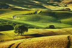 Tuscany vår, Rolling Hills på solnedgång Volterra lantlig landscap royaltyfri bild