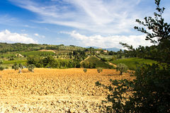 Tuscany View. View of the beautiful Tuscany landscape royalty free stock photography