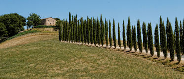 Tuscany villa. A villa on a hill in Tuscany royalty free stock image