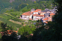 Tuscany Village. Little Tuscany village and a wine field Royalty Free Stock Photography