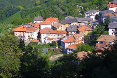 Tuscany Village. Little Tuscany village and a wine field Royalty Free Stock Images