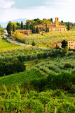 Tuscany Vineyard in Harvest Season. San Gimignano, Siena, Italy - September 23, 2012. Beautiful view of a farmhouse and vineyard with grapes ready for harvest in royalty free stock images