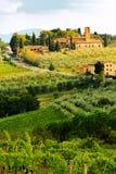 Tuscany Vineyard in Harvest Season Royalty Free Stock Images