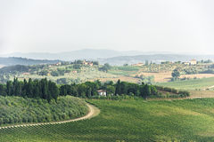 Tuscany - vineyards, hills, villages Stock Photos