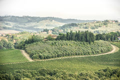 Tuscany - vineyards, hills, villages Royalty Free Stock Photography