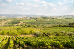 Tuscany - vineyards, hills, villages Stock Image