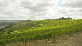 Tuscany vineyards timelapse stock video