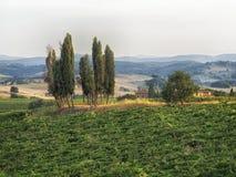 Tuscany, Włochy obrazy stock