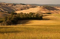 Tuscany, Włochy Fotografia Royalty Free