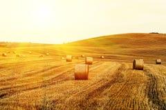 Tuscany, Włochy - Fotografia Stock