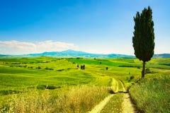 Tuscany, wiejski zmierzchu krajobraz Wsi gospodarstwo rolne, biała droga Obraz Royalty Free