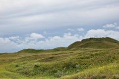 Tuscany wild landscape. Tuscany landscape with wild fields Royalty Free Stock Photo