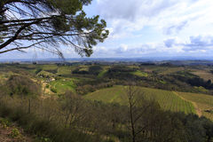 Tuscany wild landscape with field Stock Photography