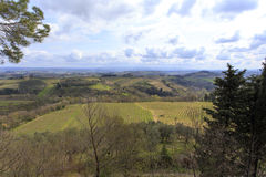 Tuscany wild landscape with field Royalty Free Stock Photography
