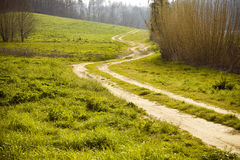 Tuscany winding road. Typical roads of the Tuscany countryside (Italy royalty free stock photos