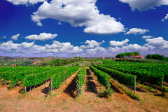 Tuscany  Wine Farm House. With blue sky and clouds Royalty Free Stock Photography