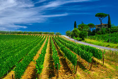 Tuscany  Wine Farm House. With blue sky and clouds Royalty Free Stock Image