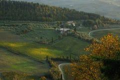 tuscany wineyard Arkivfoto