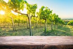 Tuscany wineyard, drewniany pusty produktu montażu pokazu szablon obrazy royalty free