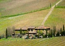 tuscany winnica Zdjęcie Stock