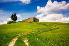 Tuscany wiosny krajobraz obraz stock