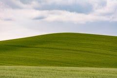 Tuscany wzgórze w Val d& x27; Orcia na chmurnym dniu Zdjęcie Stock