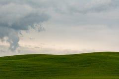 Tuscany wzgórze w Val d& x27; Orcia na chmurnym dniu Obrazy Royalty Free