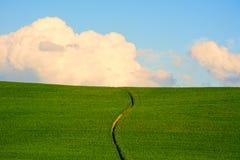 Tuscany Zielony wzgórze Zdjęcie Royalty Free