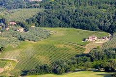 Tuscanys vinregion arkivfoto