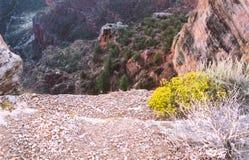 Tusen dollar Canyon_5 Arkivfoton