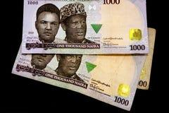 Tusen nigerianska Nairaanmärkningar på en vanlig svart bakgrund royaltyfria bilder