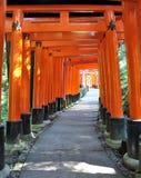 Tusen torii utfärda utegångsförbud för i den Fushimi Inari relikskrinen, Kyoto, Japan Royaltyfri Fotografi