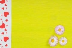Tusensköna på limefruktpapper Royaltyfria Bilder
