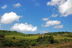 Tussen groene heuvels stock foto's
