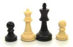 Tussen verschillende rassen schaakfamilie Royalty-vrije Stock Foto's