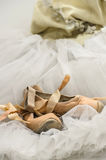 Tutú con los zapatos de ballet Fotos de archivo